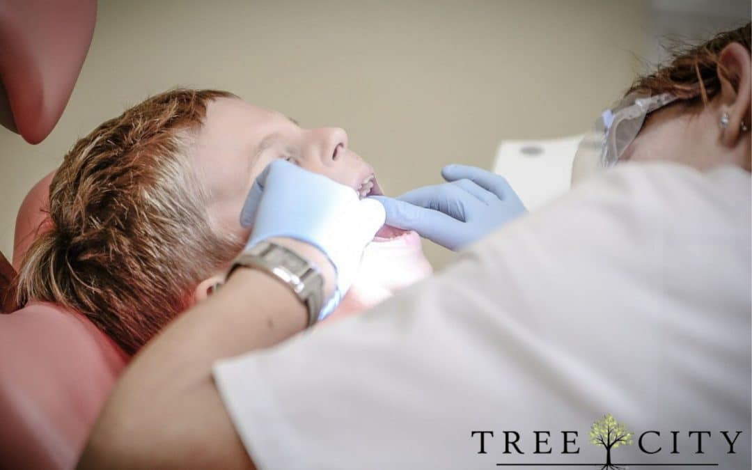 Young boy getting his teeth looked at by a female dentist.